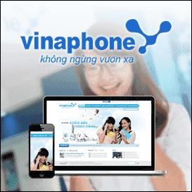 Hệ thống chăm sóc khách hàng Vinaphone