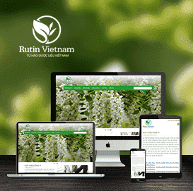 Website Rutinvietnam