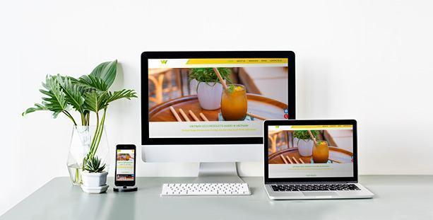 Website Vietway
